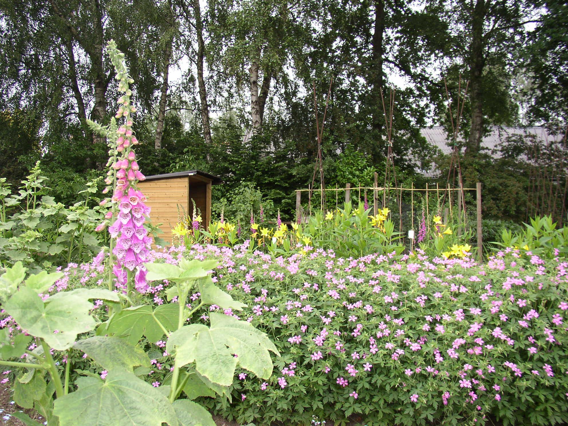 Mest Voor Tuin : Mest voor tuin volkstuindersvereniging raalte